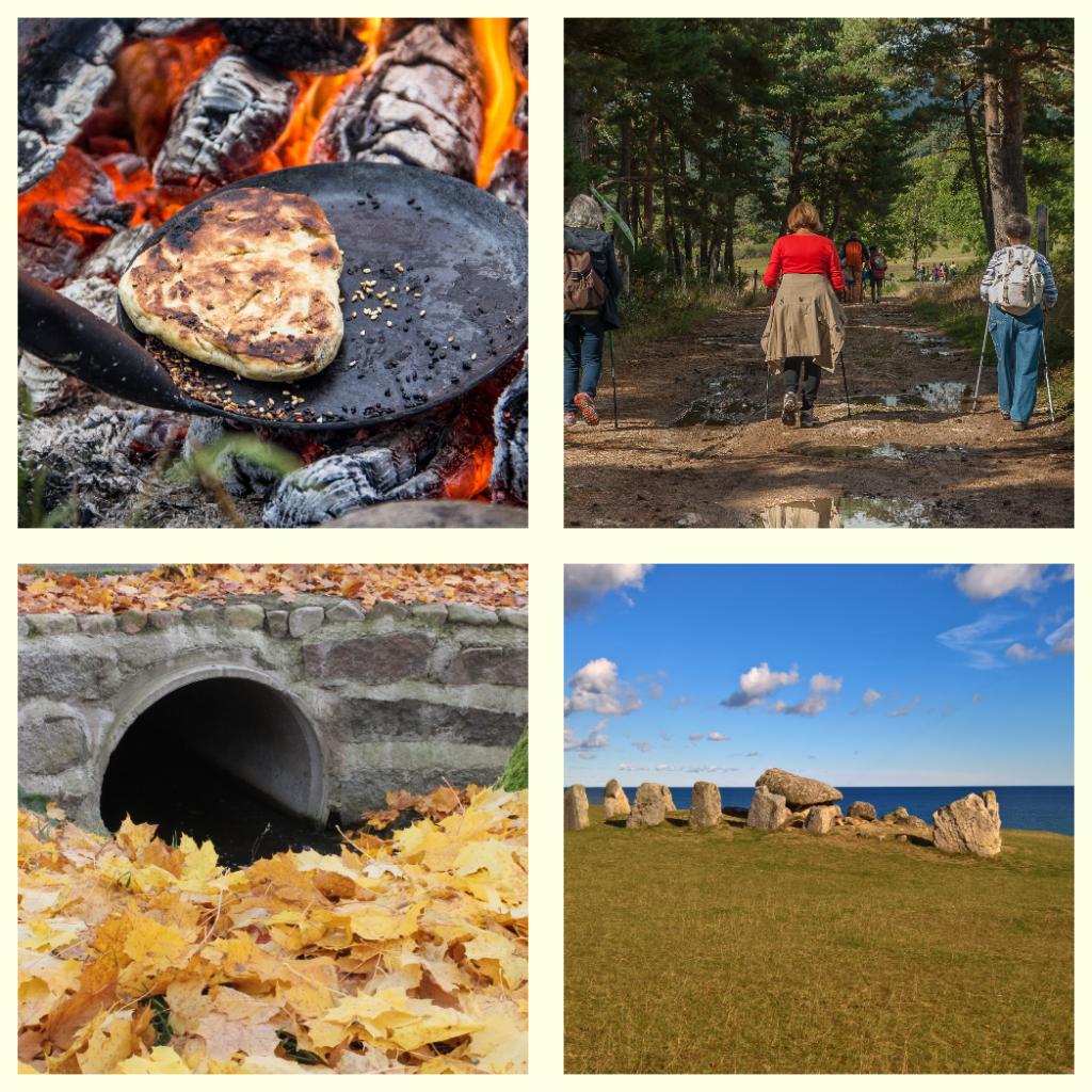 2018-10-21 – Spår av historia – mat- och kulturarvsvandring på Österlen